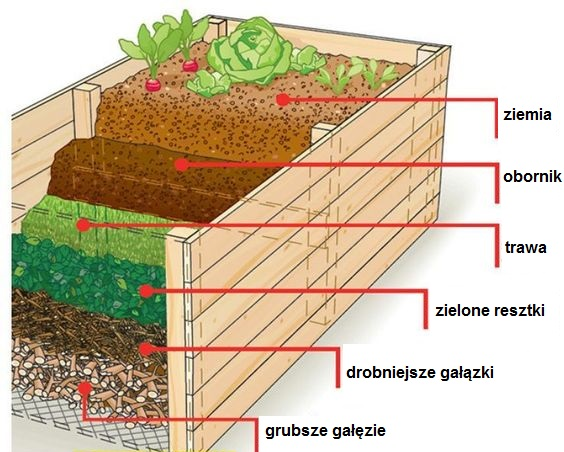 przygotowanie podłoża w skrzyni do uprawy warzyw
